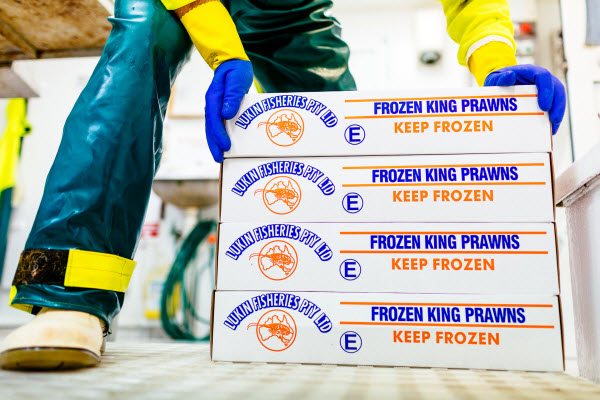 Boxes of Frozen king prawns